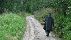 Грибник заблудился в татарстанском лесу